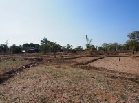 dry rice paddies and a sprinkling of plastic bags