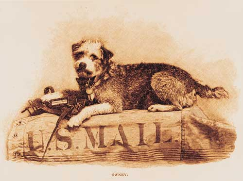 Owney the Mail Dog