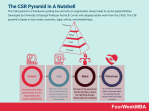 What Is The CSR Pyramid? The CSR Pyramid In A Nutshell