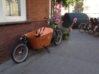 Babboe City Cargo Bike