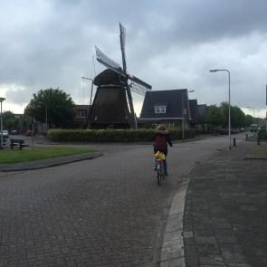 Windmolen en fietser