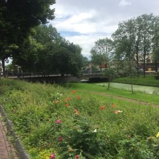 bloemen en brug
