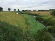 kanaal, Milsbeek, Limburg
