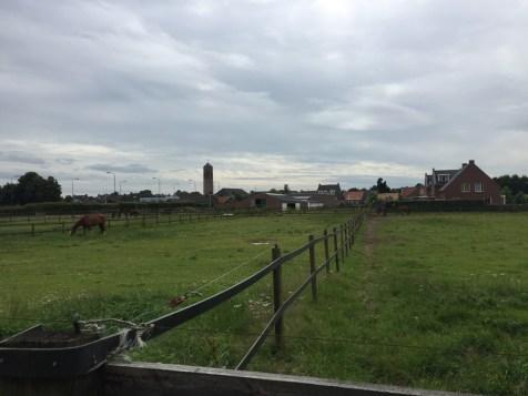 paard voor boerderij, Vierlingsbeek, North Brabant