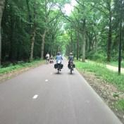 fietsers op fietspad door bomen