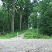 pad kruising in park