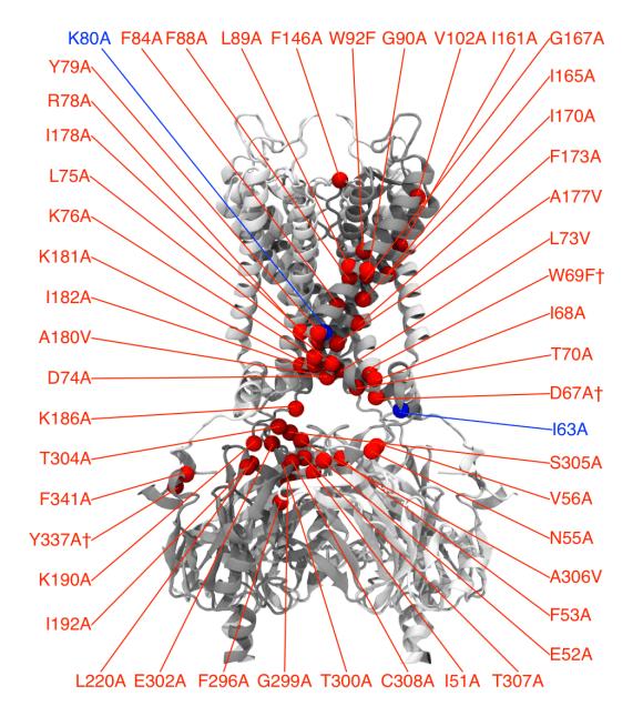 fig-k11-2