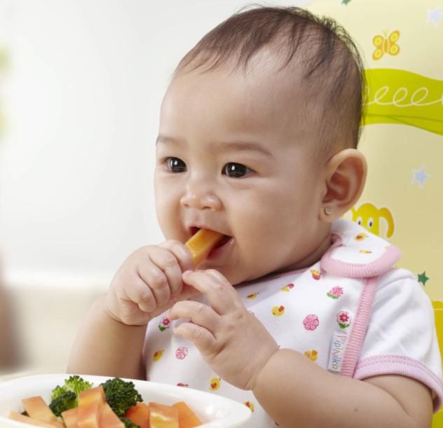 Pilihan Makanan Sehat yang Baik untuk Anak