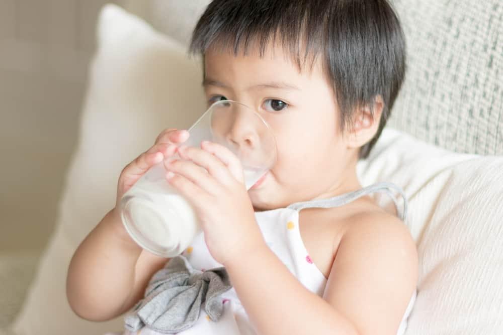 Pentingnya Susu Pertumbuhan untuk Anak 1-3 Tahun