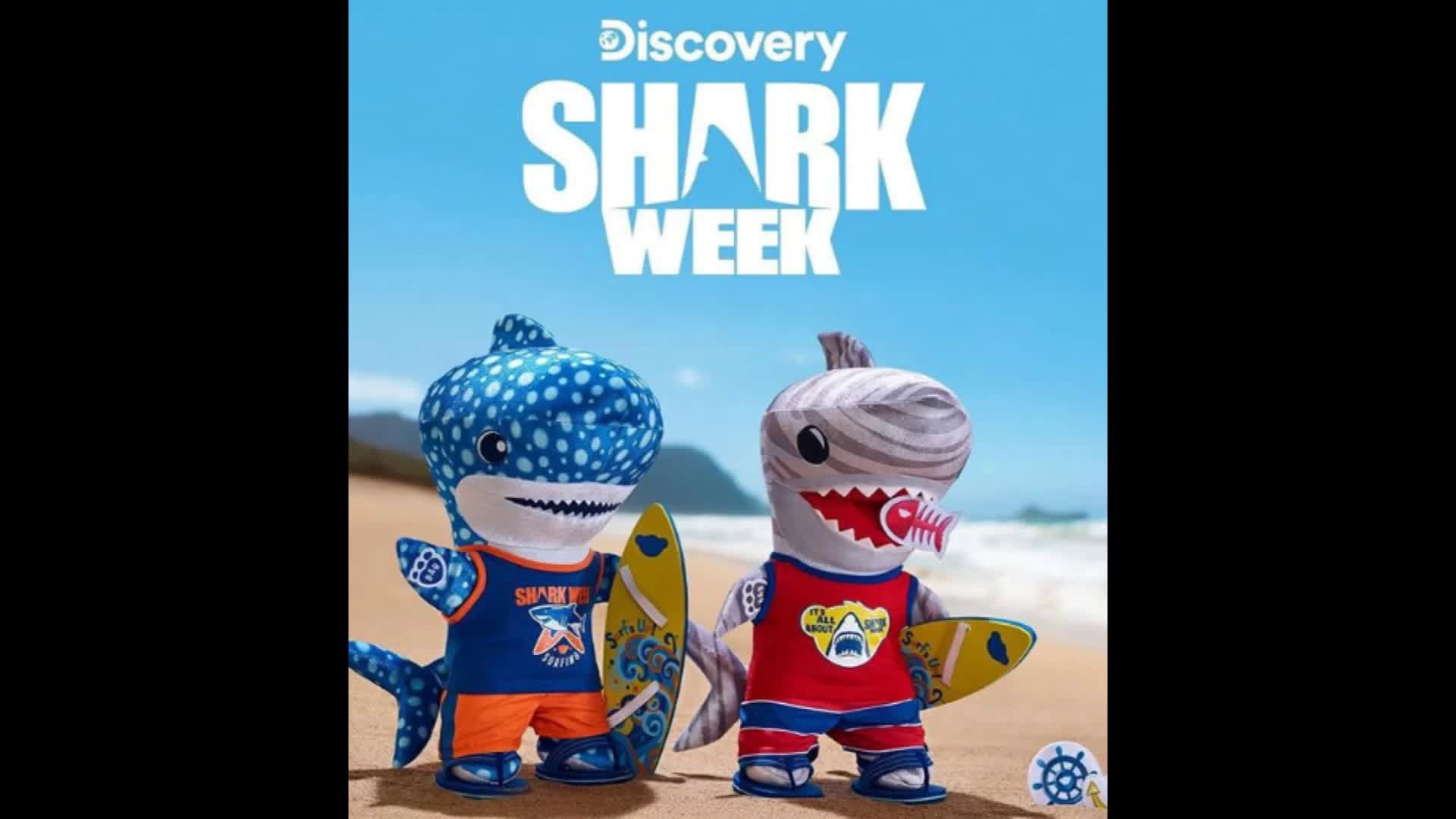 Build-A-Bear's new Shark Week collection is here for the summer ...