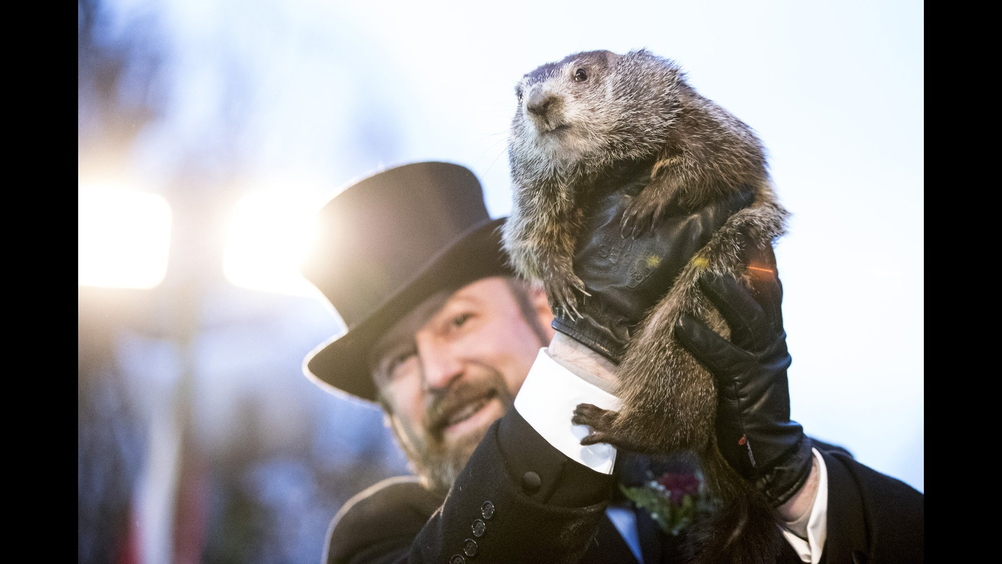 Groundhog Predicts An Early Spring Don T Get Too Excited