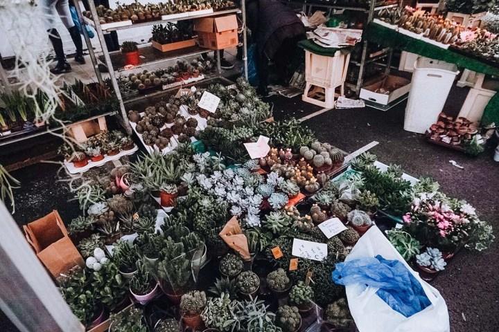 Faire le marché aux fleurs de Columbia road