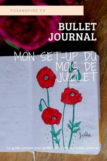 Mon bullet journal de Juillet