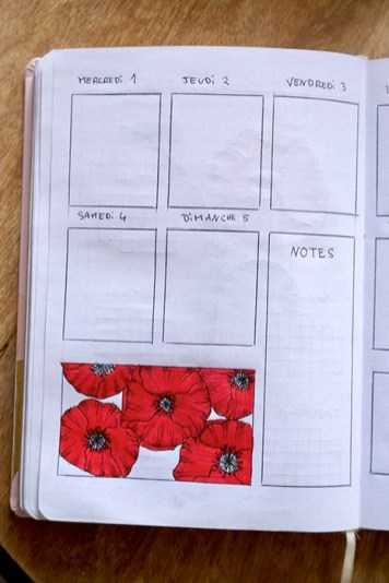 weekly-log-coquelicots