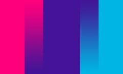 Sexual Identity Gender Flag Fox Emerson