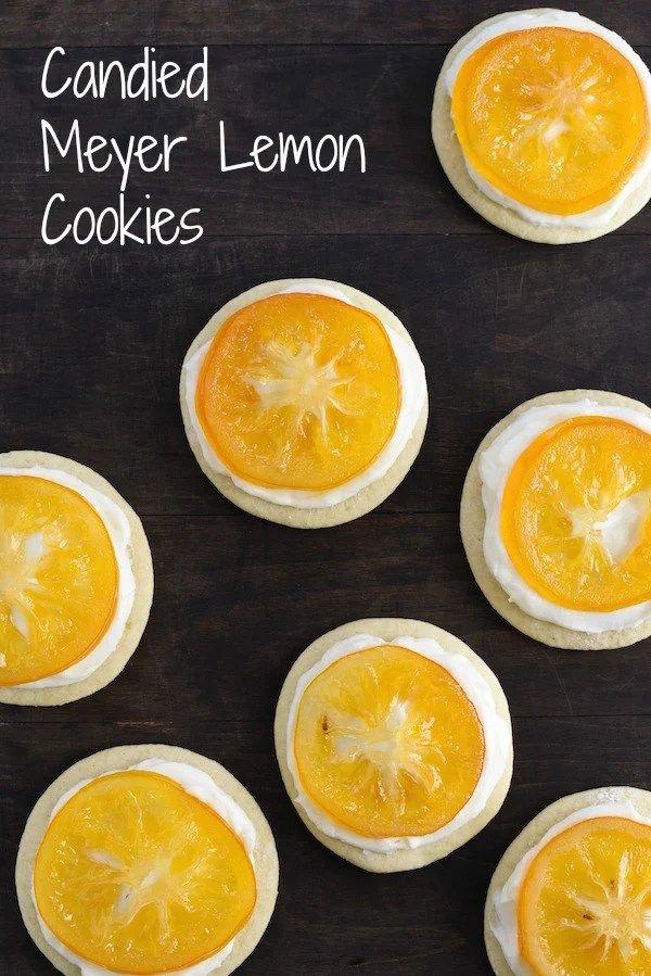 Candied Meyer Lemon Cookies - These cookies are a beautiful way to celebrate seasonal Meyer lemons! Ginger-spiced sugar cookies are topped with rich cream cheese frosting and decorated with a thin slice of candied lemon. | foxeslovelemons.com