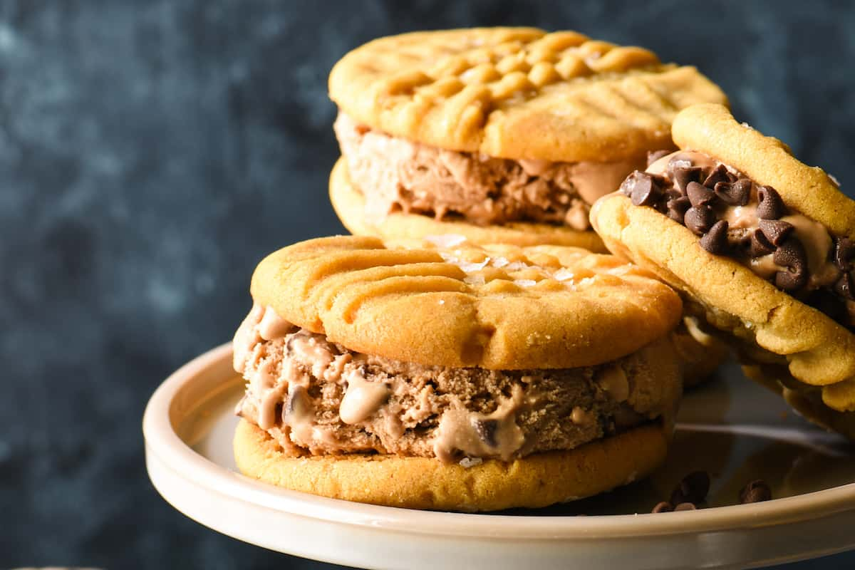 Salted Peanut Butter and Chocolate-Chocolate Chip Ice Cream Sandwiches-3 copy 2