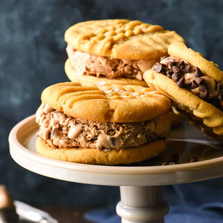 Salted Peanut Butter and Chocolate-Chocolate Chip Ice Cream Sandwiches