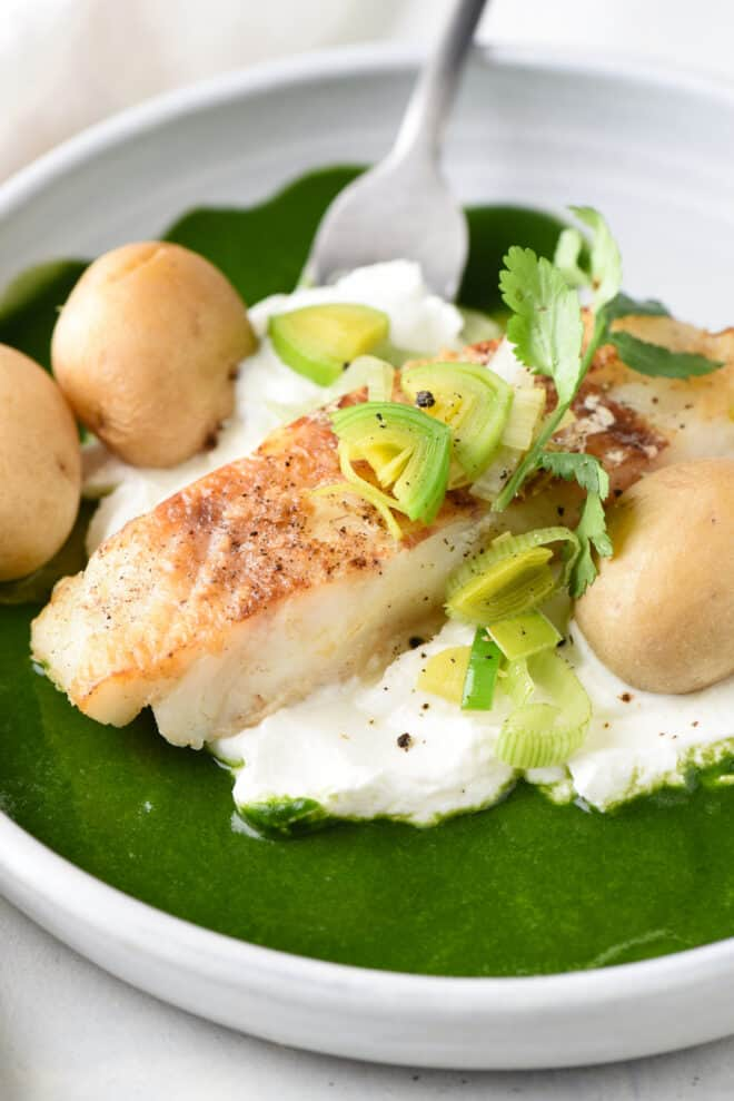 Closeup on seared fish with yogurt, green sauce and potatoes, topped with leeks and cilantro.