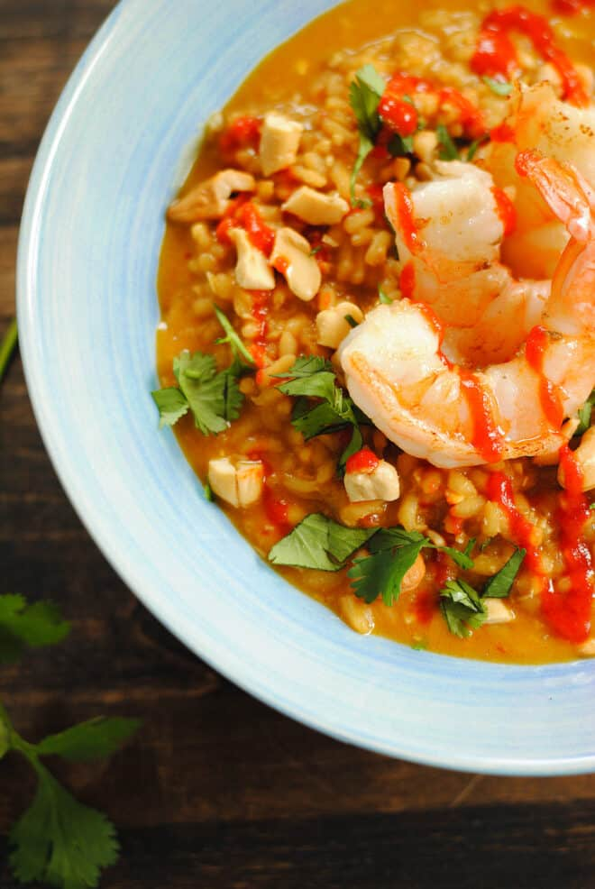 Closeup on lime shrimp on top of coconut risotto.