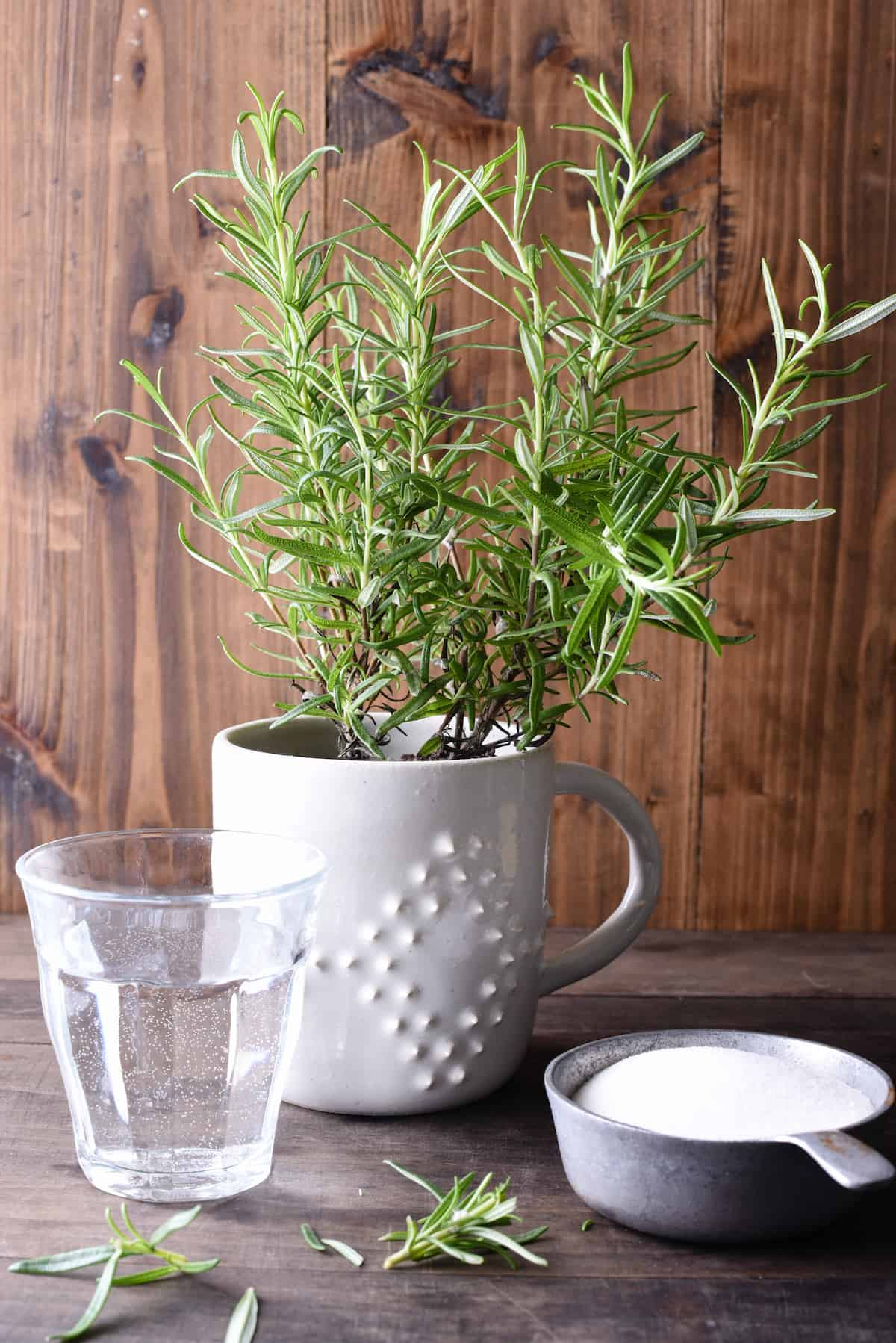 Glass of water, rosemary plant and cup of white sugar against wooden backdrop.