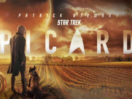 "Rich search results on Google when searched for ""Star Trek: Picard season 2"""