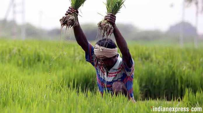 PM Narendra Modi calls the new Farm bill pro farmer