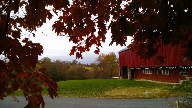 Fox Haven Farm Big Red Barn