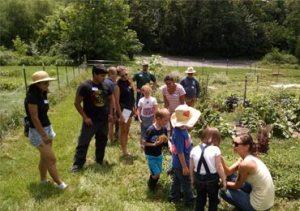 foxhaven-farm-Children Garden Tour