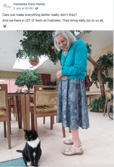 foxholes care home social media elderly lady and cat care home