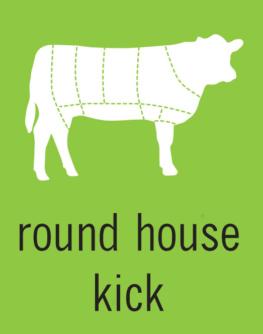 Round House Kick