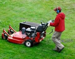 Lawn Fertilisation Services