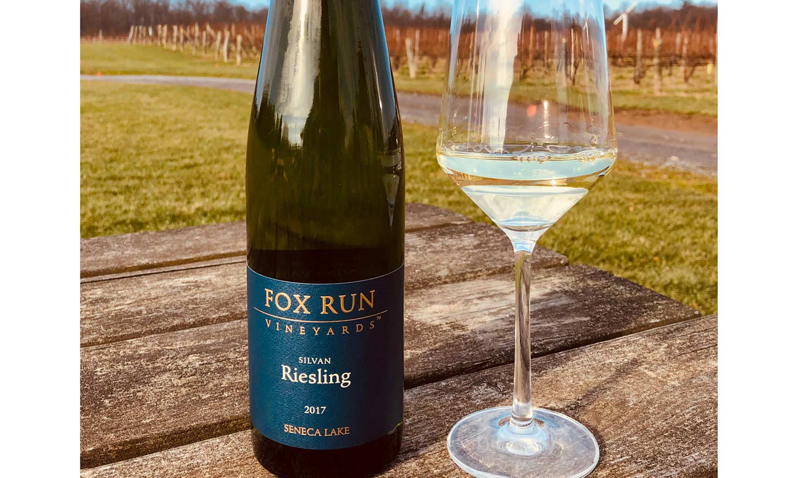 Fox Run Riesling sits on a picnic table in the vineyard