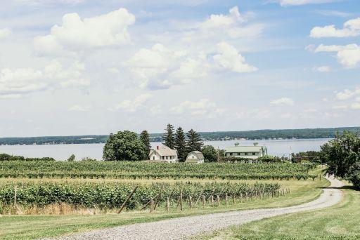 Vineyards, tasting room, barn, house, and the lake at Fox Run