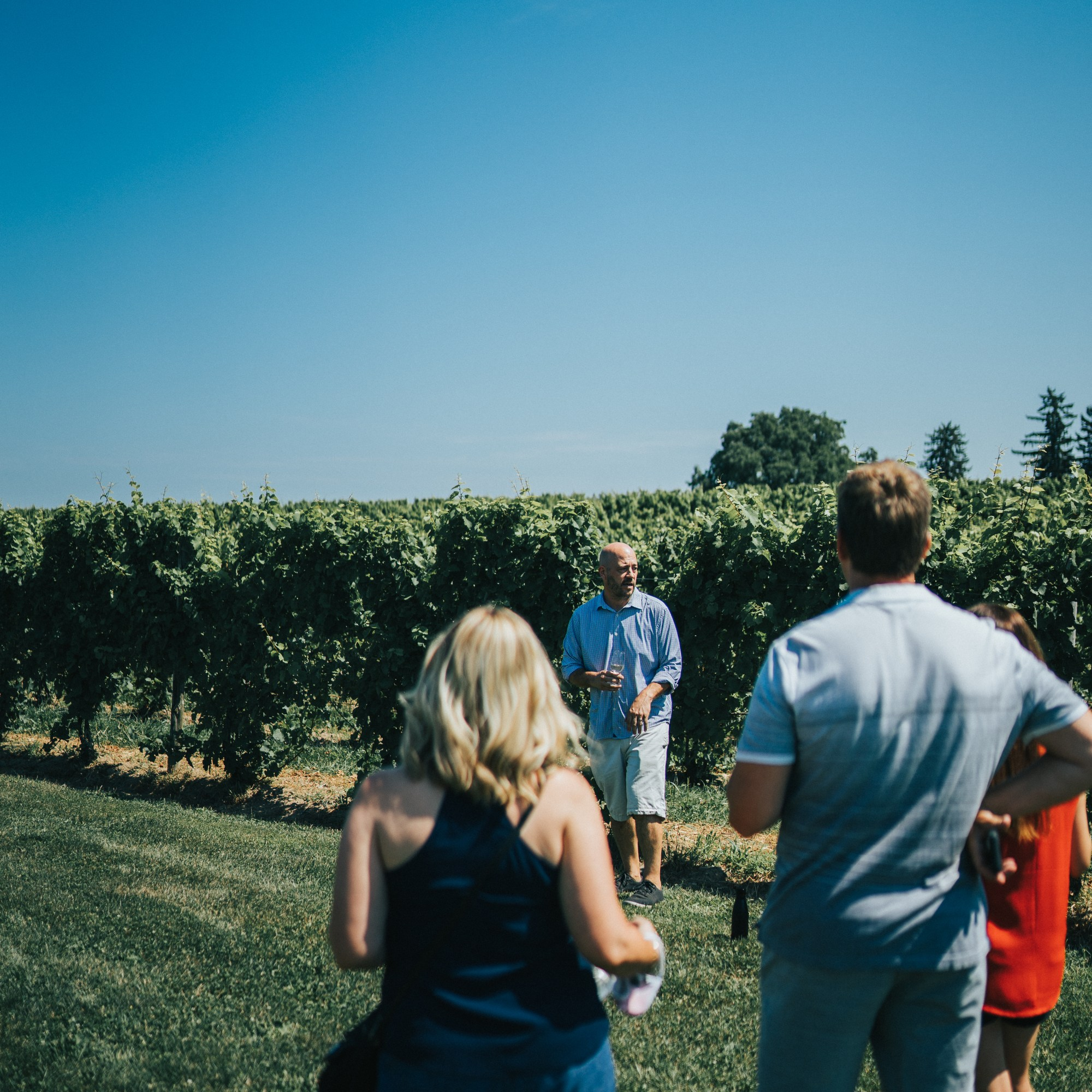 Sales Manager, Dan giving a tour in the vineyards at Fox Run