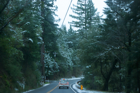 Near Confusion Hill, Humboldt County, US101