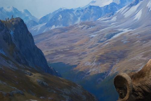 Bighorn sheep, background diorama detail