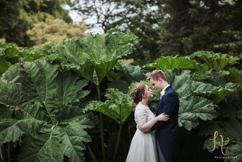 Sun Pavilion wedding photography in Harrogate. Bride and groom look at each other while standing in front of a giant leaved gunnera plant in Valley Gardens.