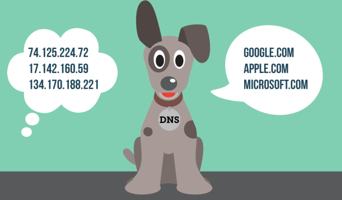 What is DNS and How it works