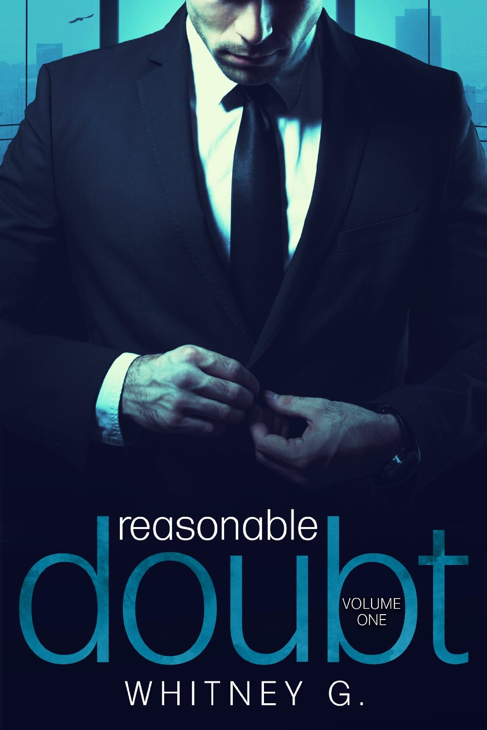 Reasonable Doubt: Volume 1 Book Cover