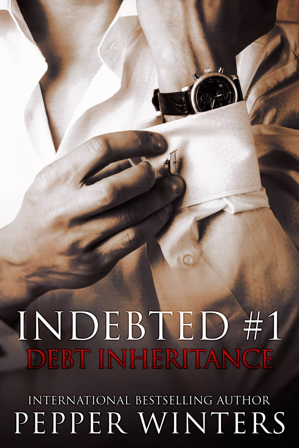 Debt Inheritance Book Cover