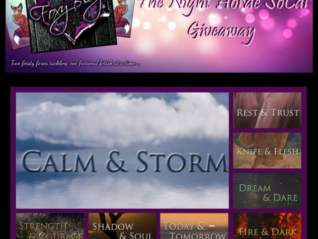 Calm & Storm by @sfanetti – double 5 Star Review & #Giveaway + Anniversary #Celebration