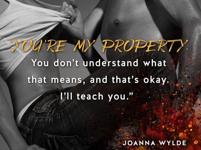 Reaper's Fire by Joanna Wylde #teaser
