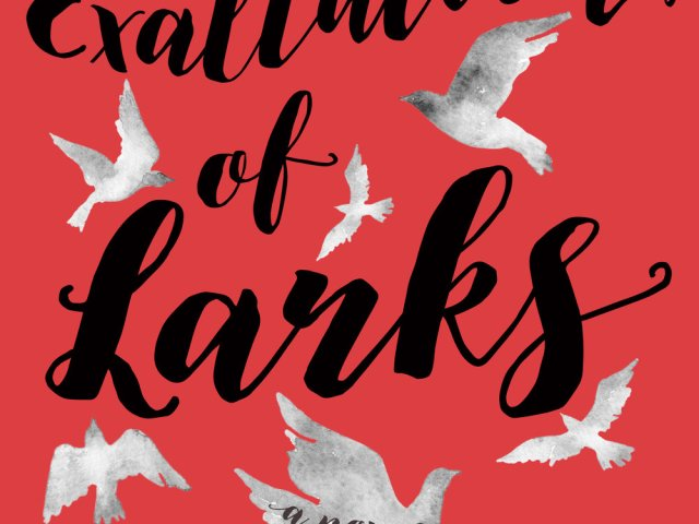 Review: An Exaltation of Larks by Suanne Laqueur