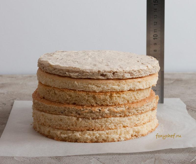 Какие бывают бисквиты? Виды бисквитного теста.