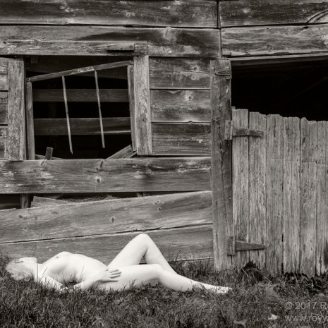 Roy_Whiddon_Alabaster and Weathered Wood_2017_photography_24x18x1_$325