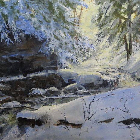 01_Scott_Rubie_Campbell's Gorge Fall below the Dam_acrylic_2020_17 x 30 x ¼
