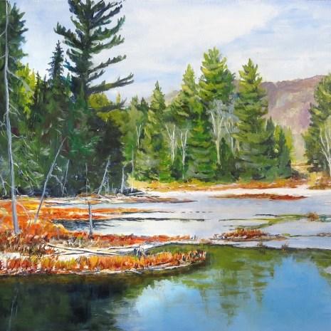 08_Scott_Rubie_ Algonquin November Wetland_acrylic on panel_2019_18 x 24 x ¼