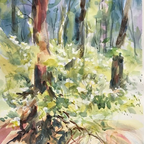 Leslie_Blackwell_Spring_Woods_watercolour_14_x21__