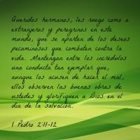 3.18 Spanish